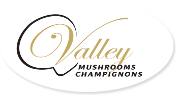 Valley Mushrooms